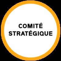 comité_strat
